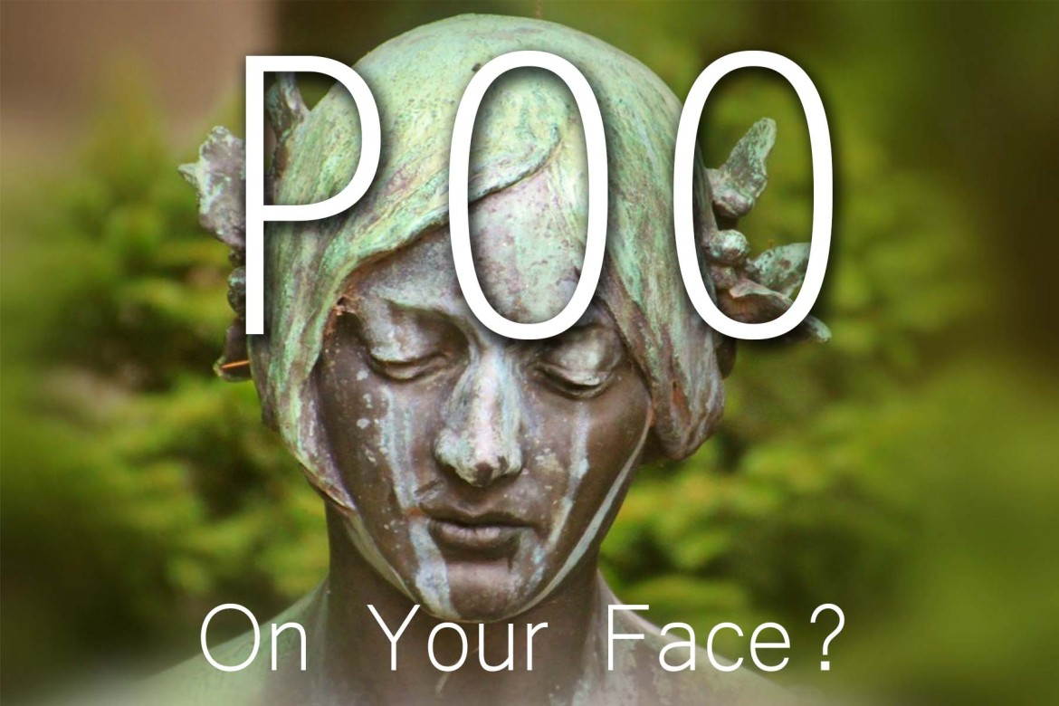 Poo on your face